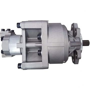 Komatsu 3EB-60-12251, POMPA-Idraulico