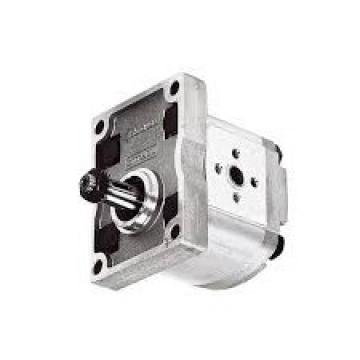 Fiat Trattore Pompa Idraulica Volume 11ccm / OEM Nr 5179722