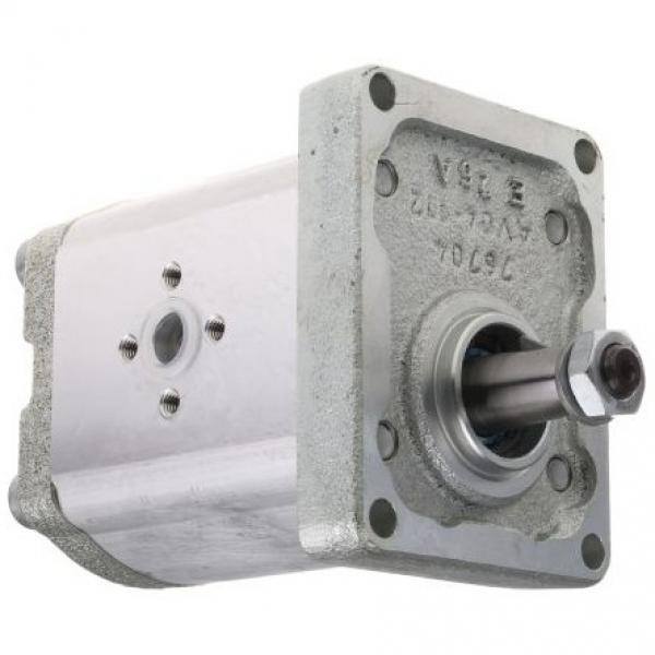 BOSCH 0514300003 Aggregato Idraulico 60 BAR Radialkolben- Pompa 2,2 Kw