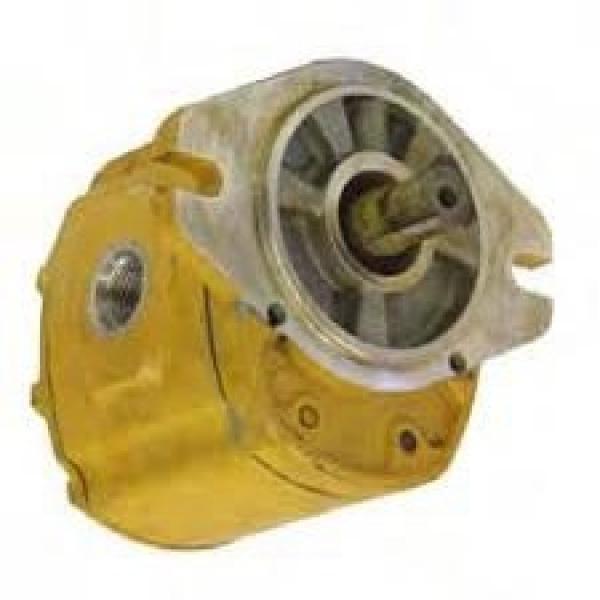 Pompa Idraulica Bosch 0510766313 per Valtra Valmet 600 6100 6200 6300 6400-8750