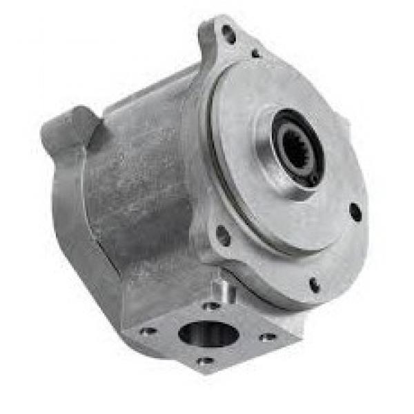 Pompa Idraulica Bosch 0510725384 per Fiat / New Holland F130 F140