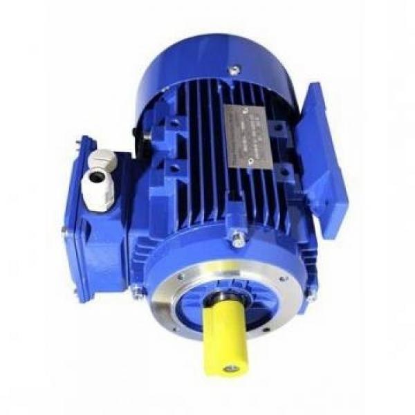 POMPA idraulica trattore FIAT CTP240/241