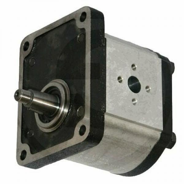 OLIO Combustibile Elettrico Diesel Pompa Di Trasferimento 12 Volt