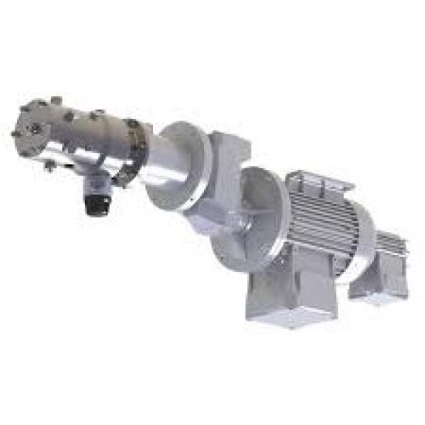 Nachi Olio Idraulico Motore Pompa LTIS70-NR UPV-1A-22N1-2.2-4-Z-10