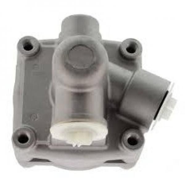 """VALVOLA Idraulica 1/4"""" NPT Pompa ad alta pressione pressione olio Non Ritorno 3000psi"""