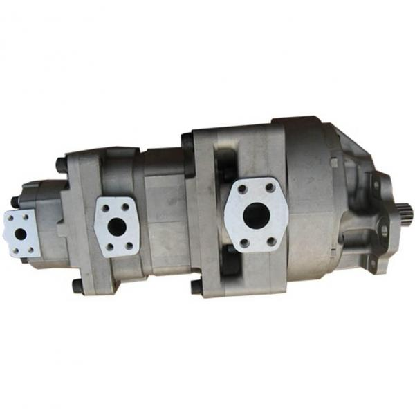 322049800 Pompa idraulica Tandem mietitrebbia Laverda 521-523