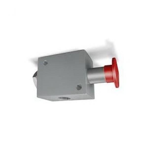 """Bucher Hydraulic 1/2"""" 70 l/min two bank double acting lever valve 3 position spr"""