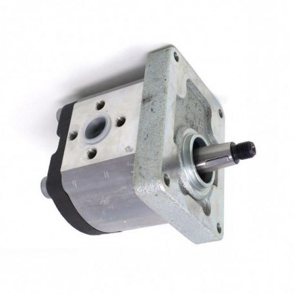 Fiat Trattore Pompa Idraulica Volume 19 Ccm / OEM Nr 5179714